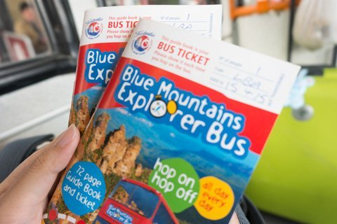 blue-mountain-explorer-bus