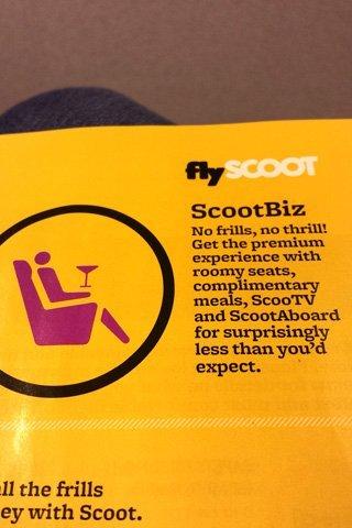 scootbiz_info